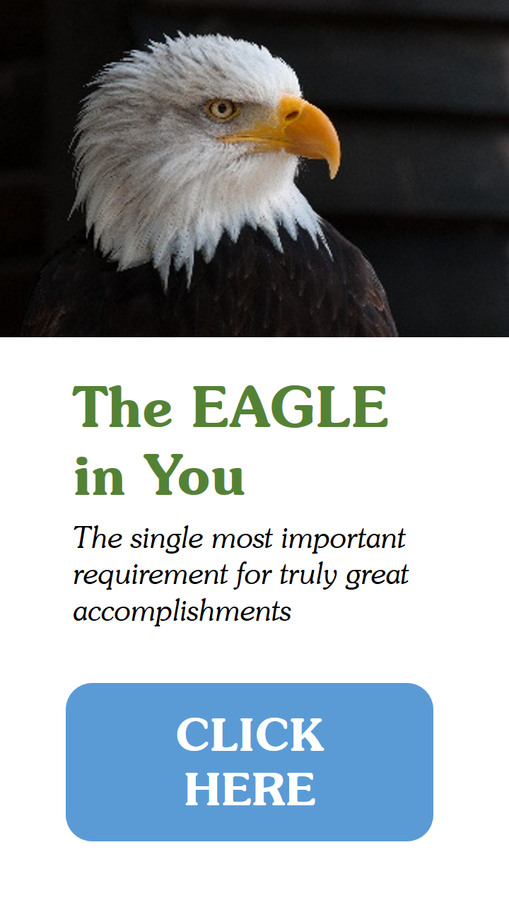 The Eagle In You - Mini Tower